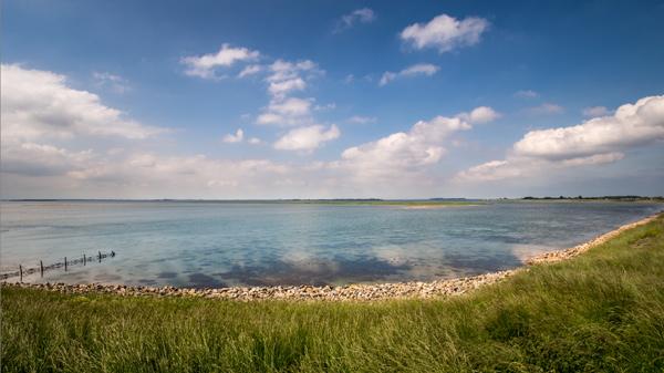 Fotobewerking in Lightroom van een lezersfoto: Waterland