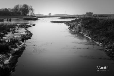 Rondje door de Biesbosch herfst 2016