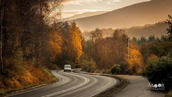 Korte en handige tips voor het fotograferen van de herfst | herfstfotografie
